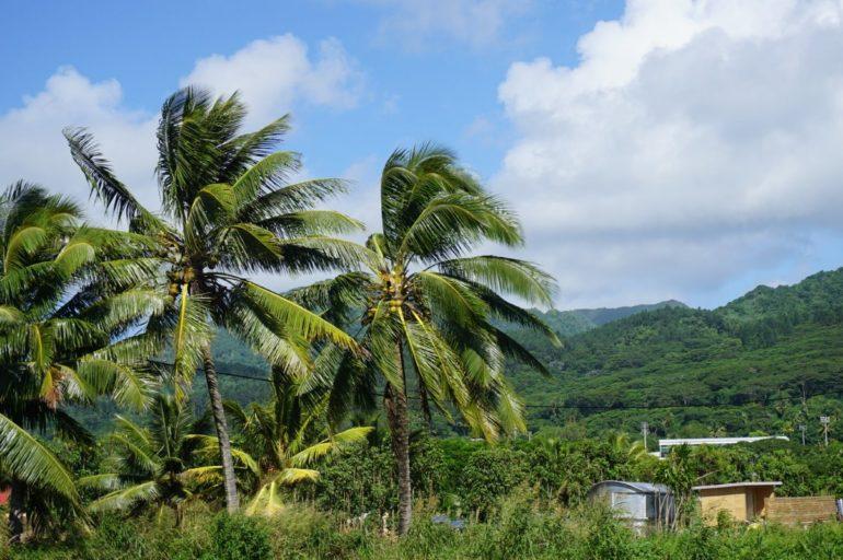 Wyspy Cooka – smak raju.