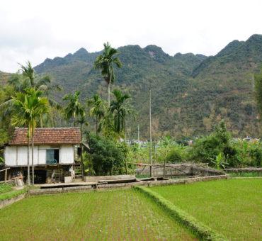 Mai Chau. Górskie powietrze, pola ryżowe i duchy przodków.