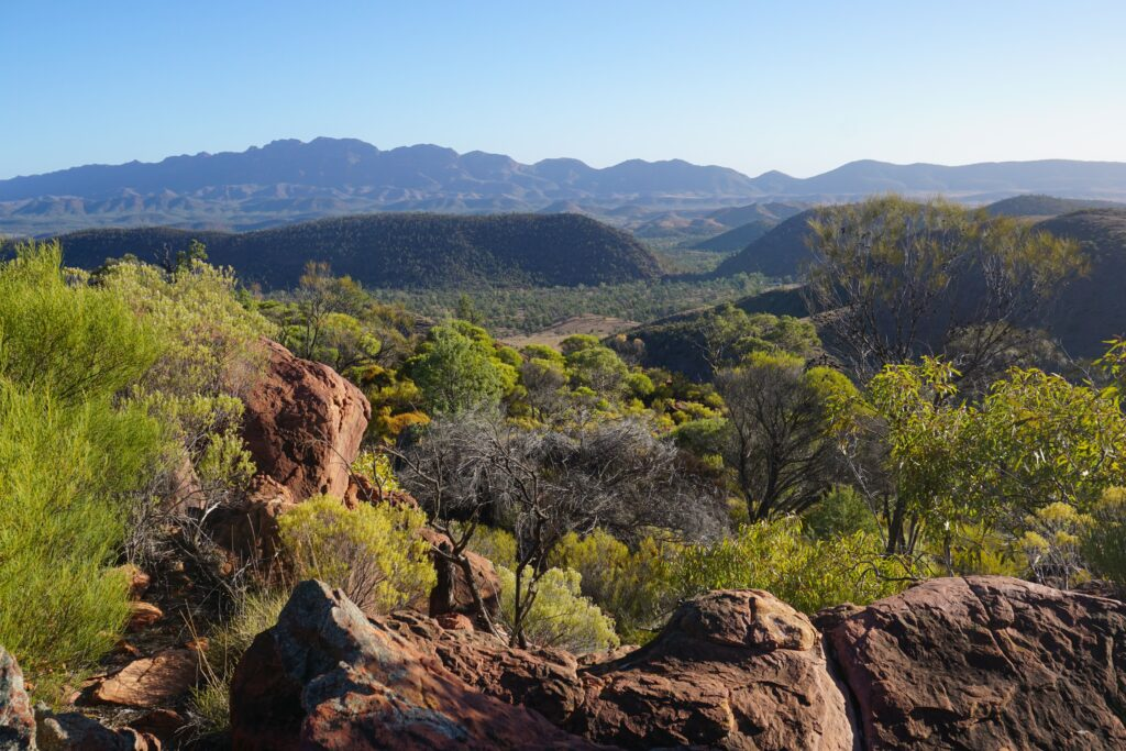 Wilpena Pound view, Ikara-Flinders Ranges, South Australia