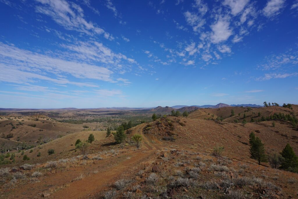 Arkaba conservancy, Outback, South Australia
